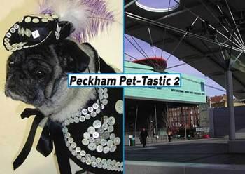Pettastic2postcard